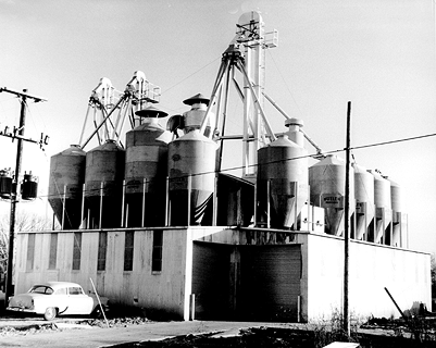 Historic picture of The Equity farm